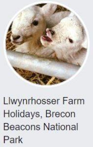 Logo - Llwynrhoser Farm